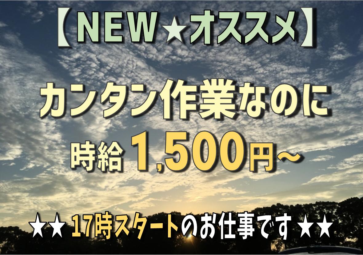 ◆NEW◆ 早いもの勝ち!! ◆17時からスタート♪重量物ナシ!! 目視検査で時給1500円!!