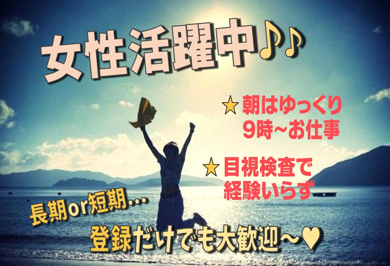 ◆新規立ち上げのため急募◆女性活躍中♪♪【近江八幡市安土町】軽量!ハーネスの検査業務